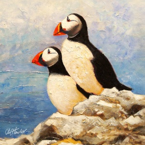 800x800_pxs_puffins_2_for_8x8in_canvas_stretchers