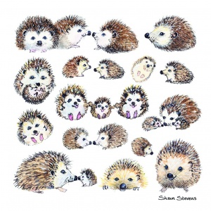 hedgehog_card_1329050423