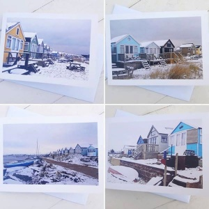 beach_huts_in_snow_set_813560070