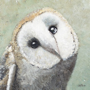 800x800_pixs_barn_owl_3_for_8inx8in_stretcher